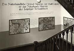 Treppenhaus des alten Heimatmuseums